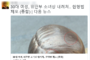 경악! 위안부 소녀상 머리 내려친 30대 여성, 배후엔?