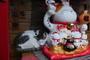 '행복한 공존' 위한 길고양이 로드무비