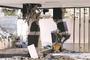 [한반도 대지진 시나리오]<br>포항에서 백두산까지<br>한반도 지진 다발 가능성 높다
