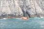 홍도 해상동굴 고립 다이버 2명 구조… 구조대원 실종 수색 중