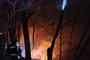 인제 산불, 강풍·안개 악화 16시간만에 진화