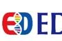 [특징주]EDGC, 100 무상증자 실시에 '상승'