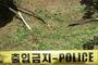 강릉 아파트 13층서 반려견과 함께 추락한 남여 3명...사망, 조사 중