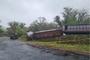 제주 에코랜드서 관람용 기차 빗길 전도…3명 부상